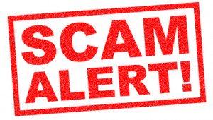 senior citizen scams