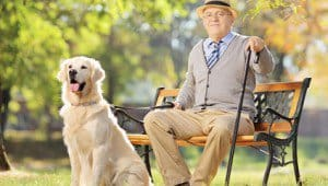 comfortable-senior-living-environment